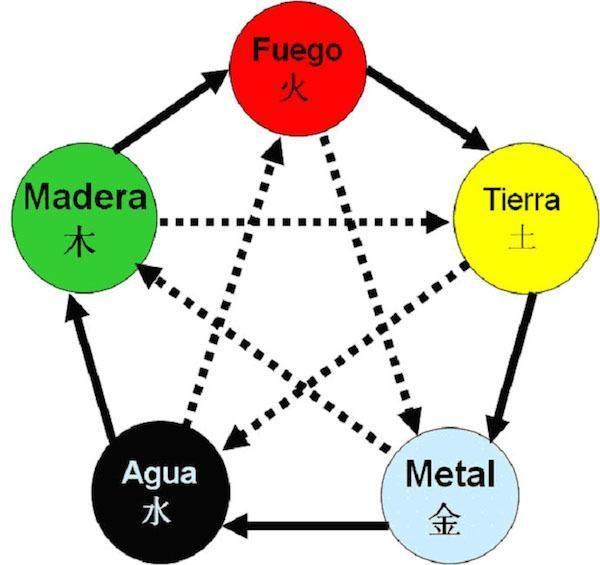 ciclos-medicina-tradicional-china