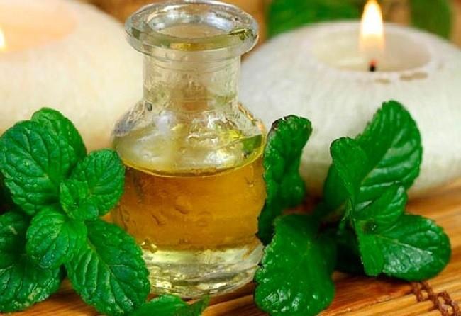 15-remedios-naturales-para-mejorar-la-digestion-remedios-naturales