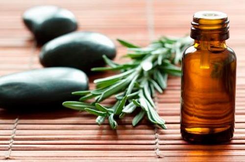 remedios-caseros-para-los-piojos-aceite-de-arbol-de-te