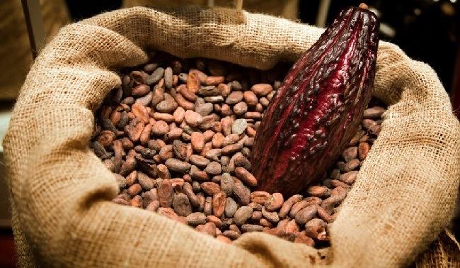 beneficios-de-comer-chocolate-efecto-estimulante
