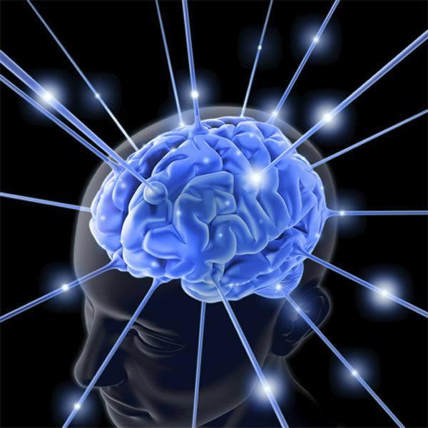 beneficios-del-pepino-para-la-salud-cerebro