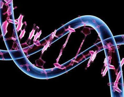 remedios-caseros-contra-la-alergia-genetica