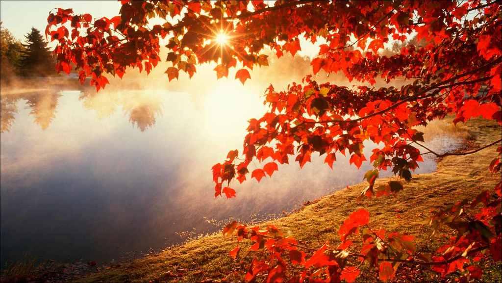 10-consejos-para-cuidar-la-salud-en-otono-sol-otonal