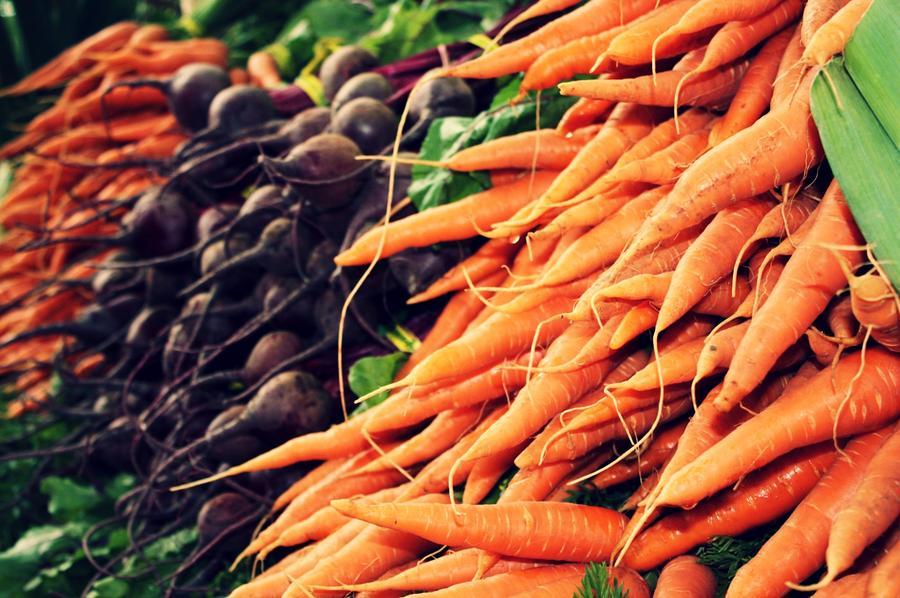 4-verduras-se-pueden-plantar-en-la-cosecha-de-otono