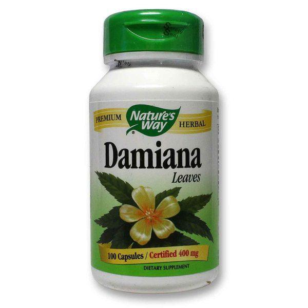 damiana-los-beneficios-y-propiedades-de-esta-planta-Ventajas-de-la-damiana
