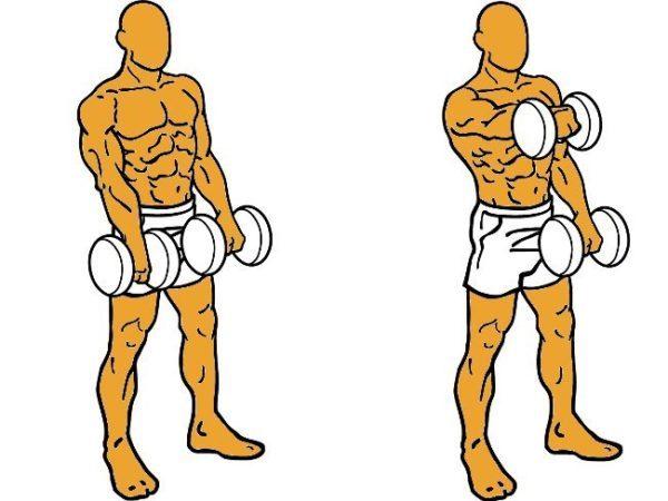 los-mejores-ejercicios-para-hombros-elevaciones-frontales