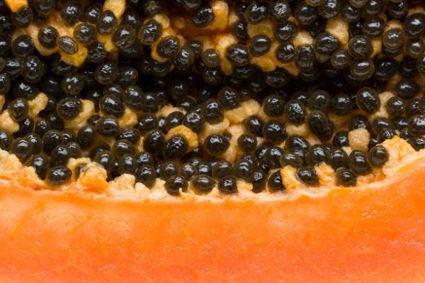 Papaya suplemento