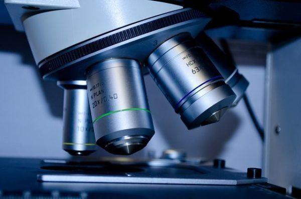alimentacion-y-anemia-analisis-diagnostico
