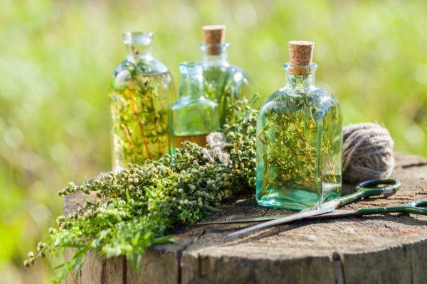 Las hierbas para combatir los triglicridos altos estragon