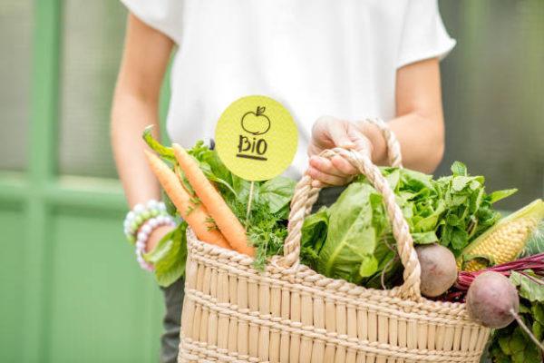 Cuales son las diferencias y similtudes entre ecologico biologico organico