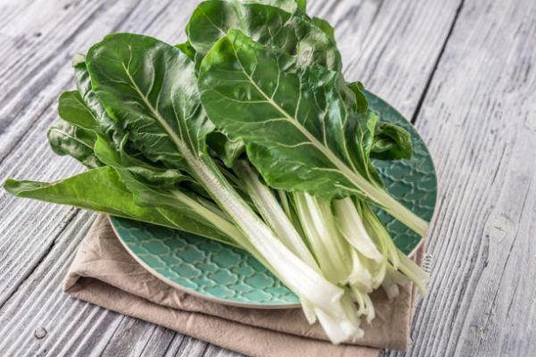 Verduras de invierno para anadir al plato