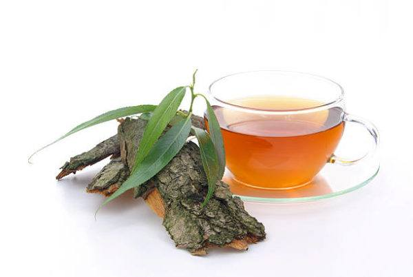 Los mejores remedios naturales para prostata te de sauce