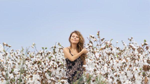 Aceite de semilla de algodón: qué es, posibles usos, beneficios y los peligros influencer cotton
