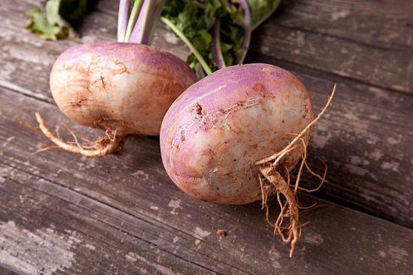 Verduras que se pueden plantar en la cosecha de otono colinabos