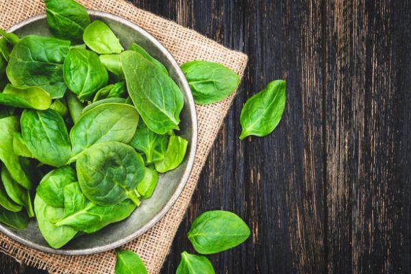 Verduras que se pueden plantar en la cosecha de otono espinacas