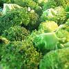 El Brócoli podría deshacer daños causados por la diabetes