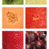 Antioxidantes, ¿evitan el envejecimiento? (Part. II)