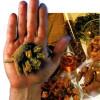 Remedios homeopáticos y sus aplicaciones