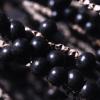 Acai Berry, cada vez más propiedades y controversias (II)