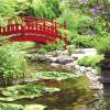 Jardín Zen en nuestro hogar