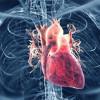 Consejos controlar presión arterial