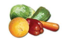 Recomendaciones nutricionales para aquellos que deseen seguir una dieta