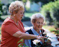 La vitamina D podría bajar el riesgo de cáncer en mujeres mayores