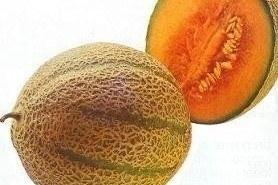 El melón, un alimento sano y fresco