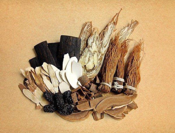 criomolienda-de-plantas-medicinales-para-salud
