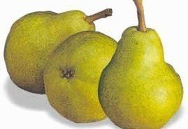La pera, la mejor elección para las personas diabéticas