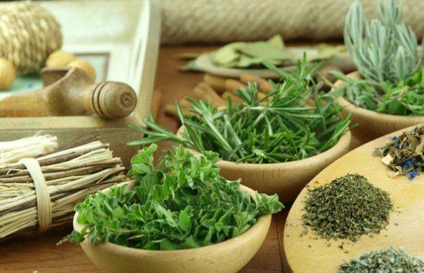 Cómo-ayudan-las-plantas-medicinales-a-nuestra-salud-filosofía-china