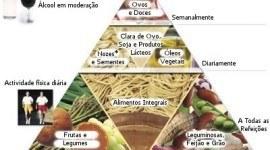 Cuáles son las diferencias entre vegano y vegetariano