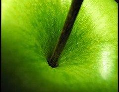 Grasas fijas, un depurativo natural (Vinagre de Manzana)