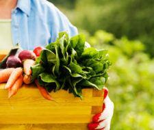 Alimentos ecológicos: por qué consumirlos | Beneficios y propiedades