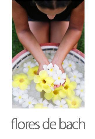 flores001.jpg