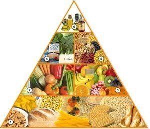 piramide-vegetariana.jpg