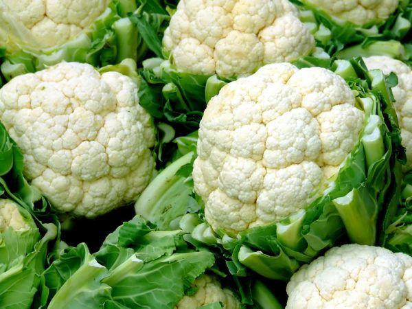 coliflor-propiedades-beneficios-recetas