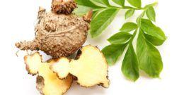 Glucomanano: Propiedades y beneficios del glucomanano para adelgazar
