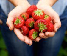10 beneficios de la fresa para la salud