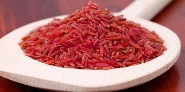 La-levadura-roja-de-arroz-Propiedades-beneficios-y-recetas