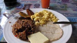El frijol terciopelo | Qué es, para qué sirve y recetas