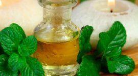 15 Remedios naturales para mejorar la digestión