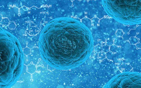 liquidos-corporales-composicion-funcion-propiedades-extracelular