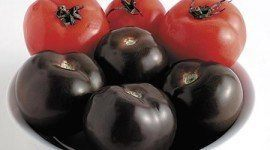 Tomates morados contra el cáncer