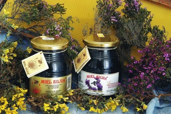 El-brezo-Propiedades-beneficios-para-la-salud