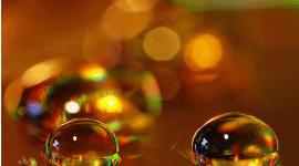 Sinusitis: qué es, síntomas, tratamiento y remedios caseros
