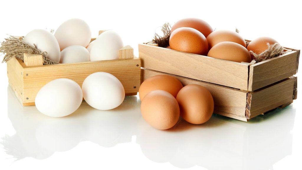 comer-un-huevo-diario-es-bueno-o-malo