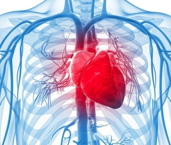 10-efectos-que-nos-produce-la-adrenalina-y-que-no-conocias-taquicardia