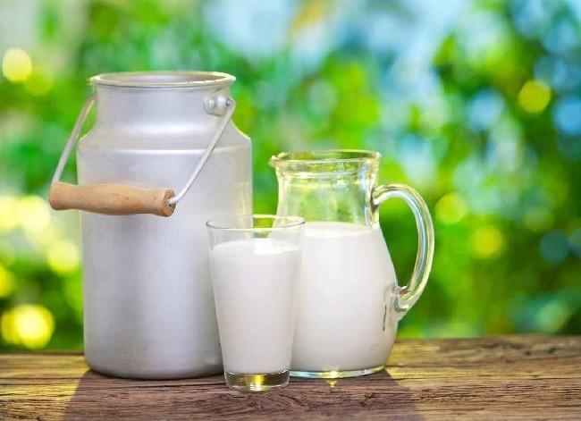 la-resaca-10-remedios-naturales-para-combatir-la-resaca-leche