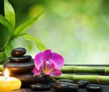 Las 10 terapias alternativas más populares que debes conocer